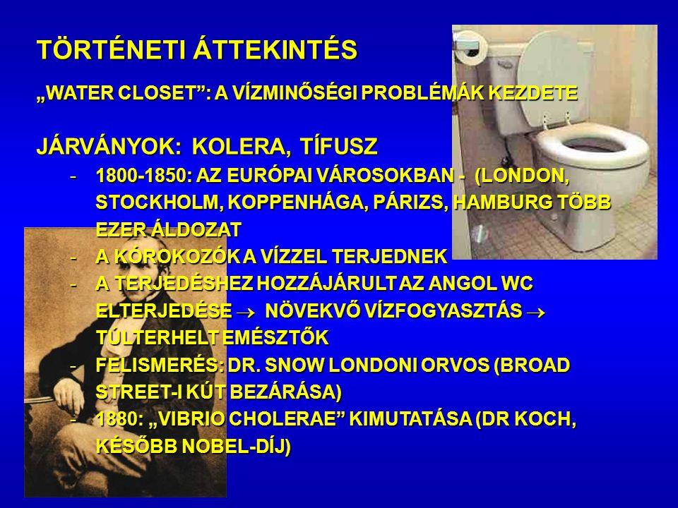 JÁRVÁNYOK: KOLERA, TÍFUSZ -1800-1850: AZ EURÓPAI VÁROSOKBAN - (LONDON, STOCKHOLM, KOPPENHÁGA, PÁRIZS, HAMBURG TÖBB EZER ÁLDOZAT -A KÓROKOZÓK A VÍZZEL TERJEDNEK -A TERJEDÉSHEZ HOZZÁJÁRULT AZ ANGOL WC ELTERJEDÉSE  NÖVEKVŐ VÍZFOGYASZTÁS  TÚLTERHELT EMÉSZTŐK -FELISMERÉS: DR.