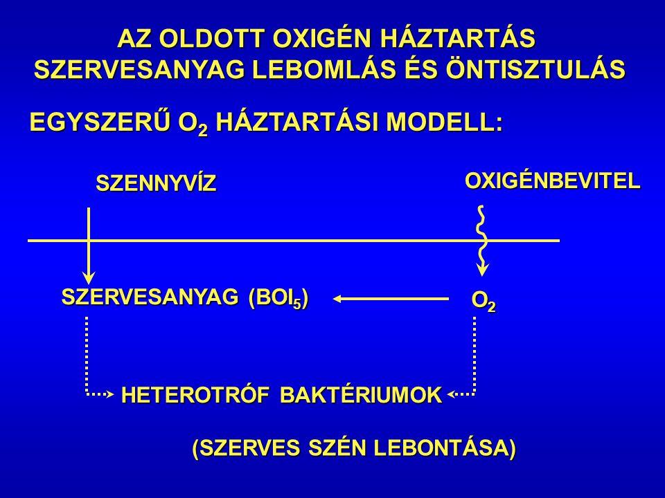 AZ OLDOTT OXIGÉN HÁZTARTÁS SZERVESANYAG LEBOMLÁS ÉS ÖNTISZTULÁS SZERVESANYAG LEBOMLÁS ÉS ÖNTISZTULÁS EGYSZERŰ O 2 HÁZTARTÁSI MODELL: SZENNYVÍZ SZERVESANYAG (BOI 5 ) HETEROTRÓF BAKTÉRIUMOK (SZERVES SZÉN LEBONTÁSA) OXIGÉNBEVITEL O2O2O2O2