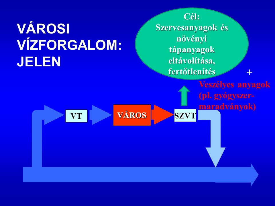SZVT VÁROS VT VÁROSI VÍZFORGALOM: JELEN Cél: Szervesanyagok és növényi tápanyagok eltávolítása, fertőtlenítés Veszélyes anyagok (pl.