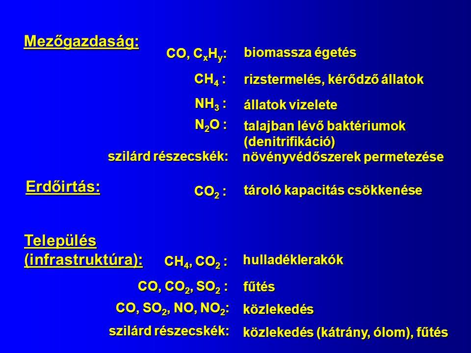 Mezőgazdaság: CO, C x H y : biomassza égetés NH 3 : állatok vizelete CH 4 : rizstermelés, kérődző állatok Erdőirtás: CO 2 : tároló kapacitás csökkenése Település (infrastruktúra): CH 4, CO 2 : hulladéklerakók CO, CO 2, SO 2 : fűtés CO, SO 2, NO, NO 2 : közlekedés N 2 O : talajban lévő baktériumok (denitrifikáció) szilárd részecskék: közlekedés (kátrány, ólom), fűtés szilárd részecskék: növényvédőszerek permetezése