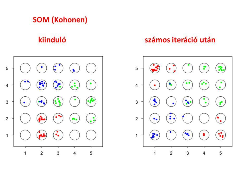 SOM (Kohonen) kiinduló számos iteráció után