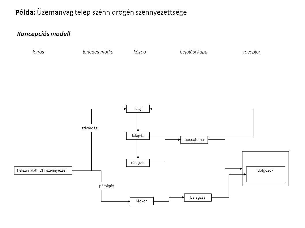 Példa: Üzemanyag telep szénhidrogén szennyezettsége Koncepciós modell Felszín alatti CH szennyezés légkör talaj talajvíz rétegvíz tápcsatorna belégzés