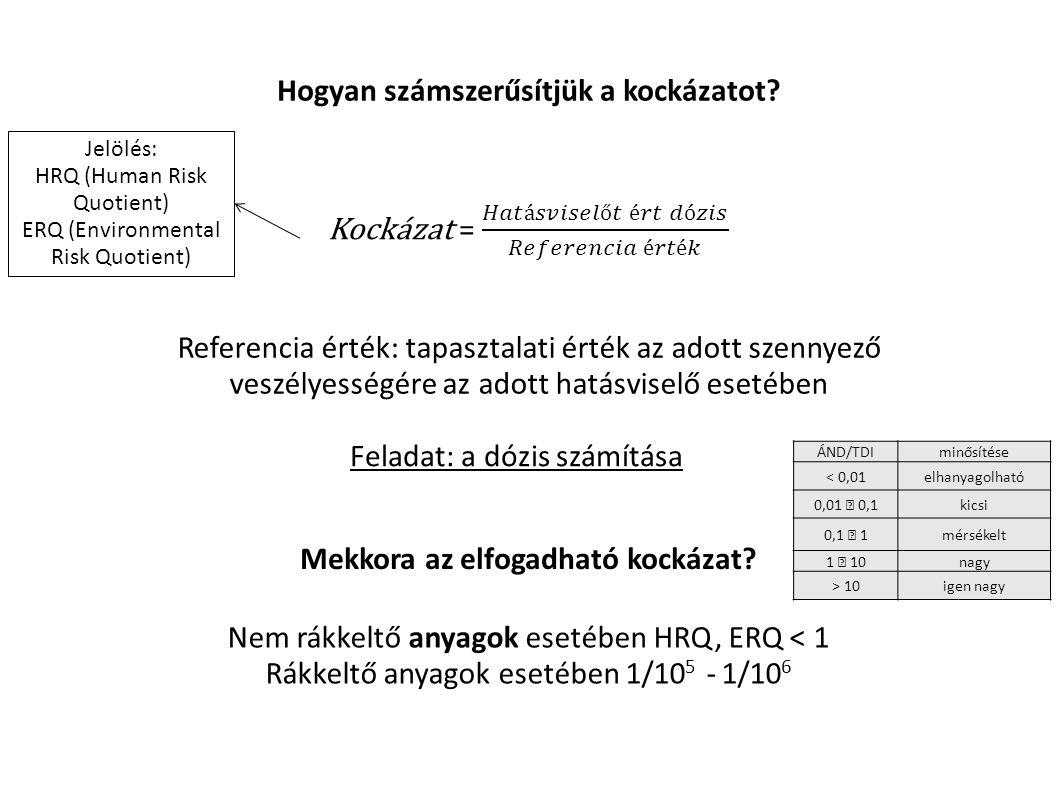 A vegyi anyagok keverékének egyidejű expozíciója, valamint a több expozíciós útvonalon egyszerre kialakuló kitettség együttes és összegző értékelése szintén általános problémája a környezeti kockázatfelméréseknek A legtöbb EU országban a WHO állásfoglalását követve, a szerkezetében hasonló vegyületek (dioxinok-furánok és poliaromás szénhidrogének) egyidejű expozíciójakor ekvivalencia faktort használnak a toxicitás leírására.