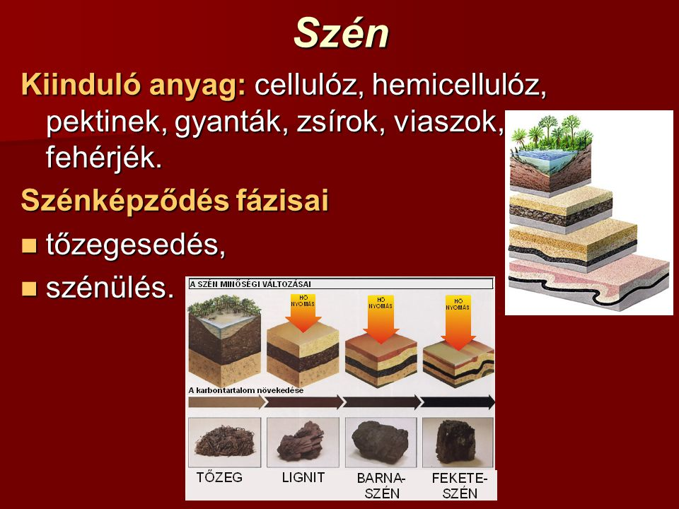 Szén Kiinduló anyag: cellulóz, hemicellulóz, pektinek, gyanták, zsírok, viaszok, fehérjék. Szénképződés fázisai tőzegesedés, tőzegesedés, szénülés. sz