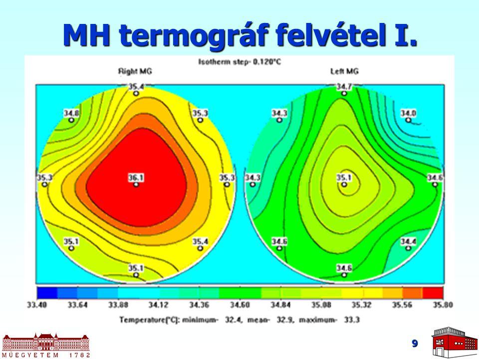 9 MH termográf felvétel I.