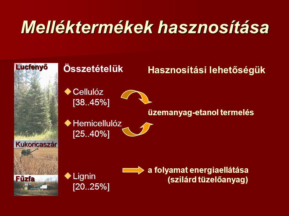Melléktermékek hasznosítása Hasznosítási lehetőségük a folyamat energiaellátása (szilárd tüzelőanyag) üzemanyag-etanol termelés Összetételük  Celluló