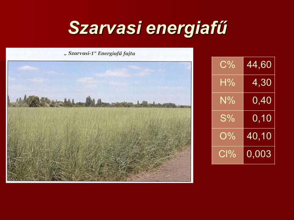 Szarvasi energiafű C%44,60 H%4,30 N%0,40 S%0,10 O%40,10 Cl%0,003