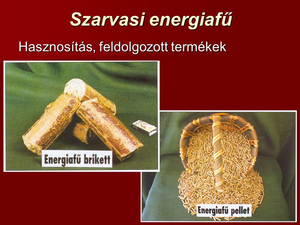 Szarvasi energiafű Hasznosítás, feldolgozott termékek