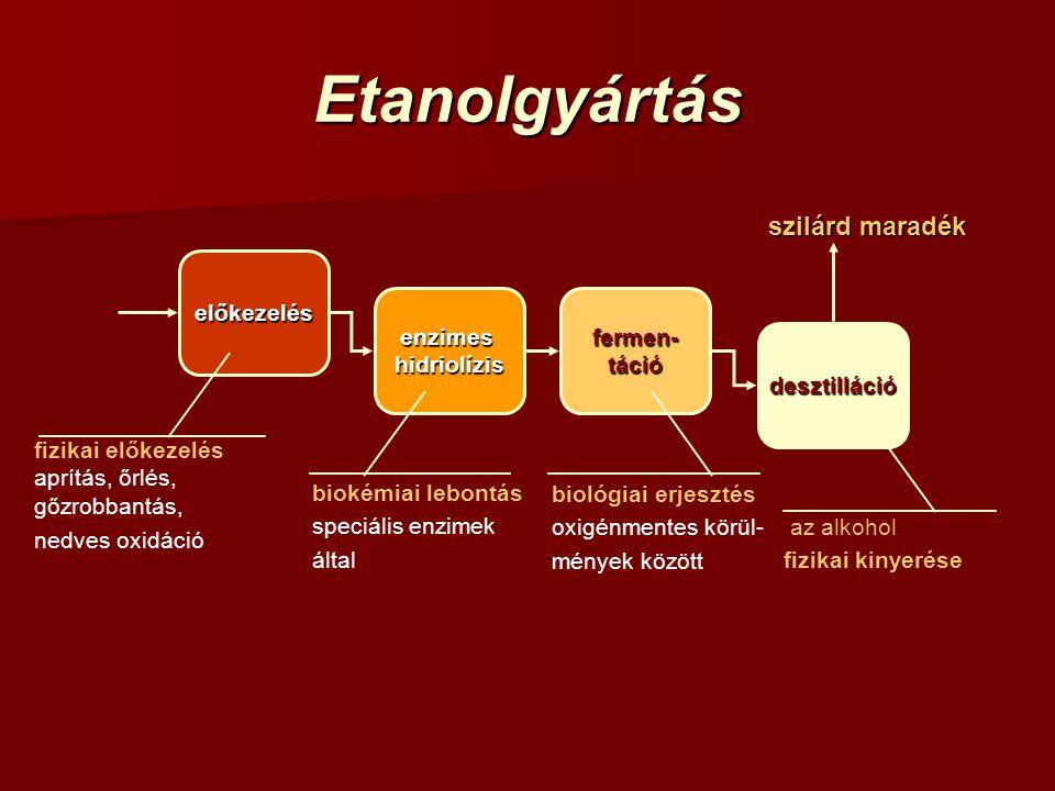 Etanolgyártás fermen- táció desztilláció enzimeshidriolízis előkezelés szilárd maradék fizikai előkezelés aprítás, őrlés, gőzrobbantás, nedves oxidáci
