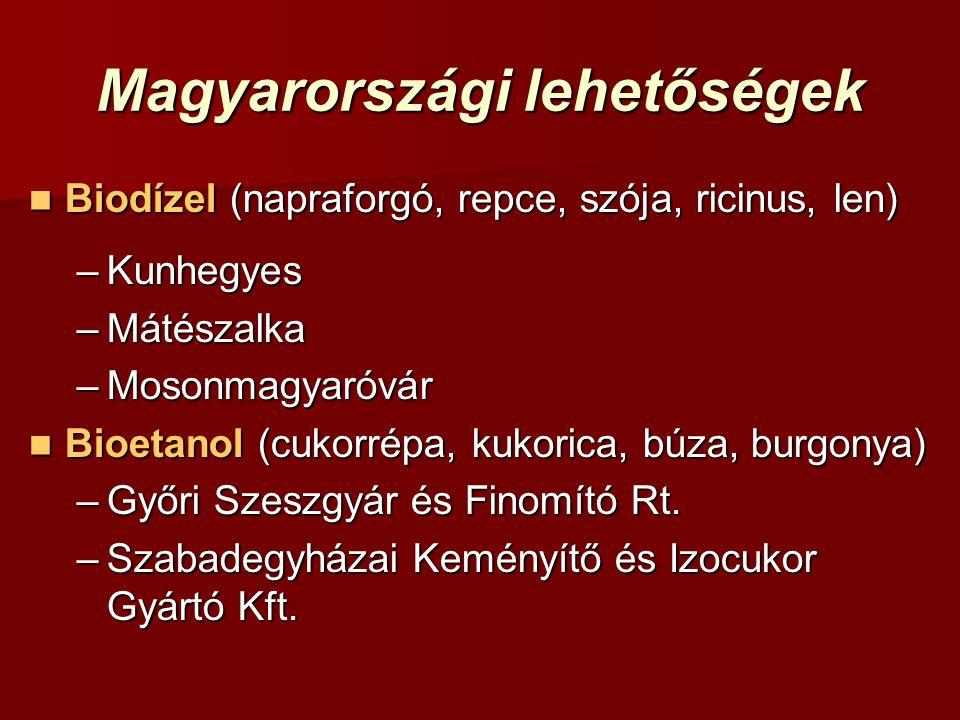 Magyarországi lehetőségek Biodízel (napraforgó, repce, szója, ricinus, len) Biodízel (napraforgó, repce, szója, ricinus, len) –Kunhegyes –Mátészalka –