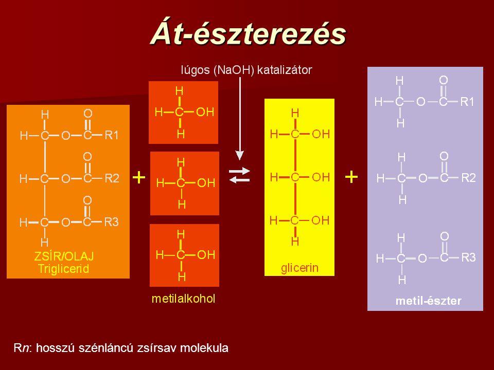 Át-észterezés Rn: hosszú szénláncú zsírsav molekula