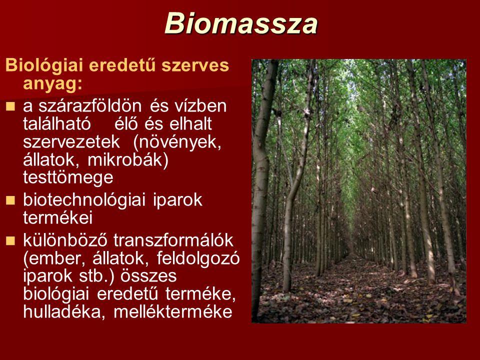 Biomassza A biomassza (elsődleges) tárolt napenergia: CO 2 +H 2 O+fény+klorofil → CH 2 O+O 2