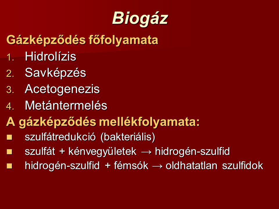 Biogáz Gázképződés főfolyamata 1. Hidrolízis 2. Savképzés 3. Acetogenezis 4. Metántermelés A gázképződés mellékfolyamata: szulfátredukció (bakteriális