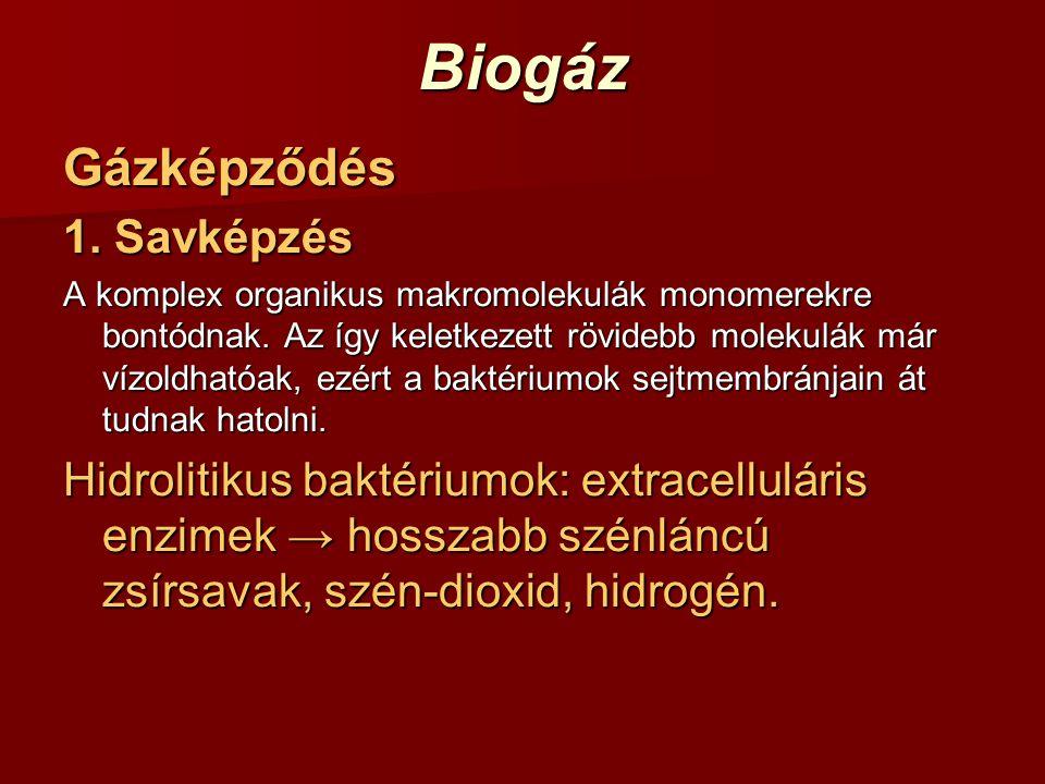 BiogázGázképződés 1. Savképzés A komplex organikus makromolekulák monomerekre bontódnak. Az így keletkezett rövidebb molekulák már vízoldhatóak, ezért