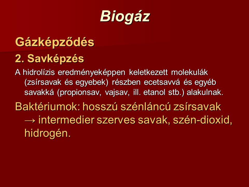 BiogázGázképződés 2. Savképzés A hidrolízis eredményeképpen keletkezett molekulák (zsírsavak és egyebek) részben ecetsavvá és egyéb savakká (propionsa