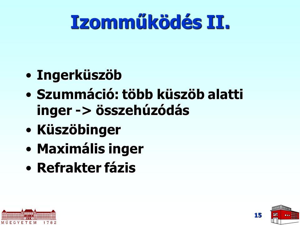 15 IngerküszöbIngerküszöb Szummáció: több küszöb alatti inger -> összehúzódásSzummáció: több küszöb alatti inger -> összehúzódás KüszöbingerKüszöbinger Maximális ingerMaximális inger Refrakter fázisRefrakter fázis Izomműködés II.