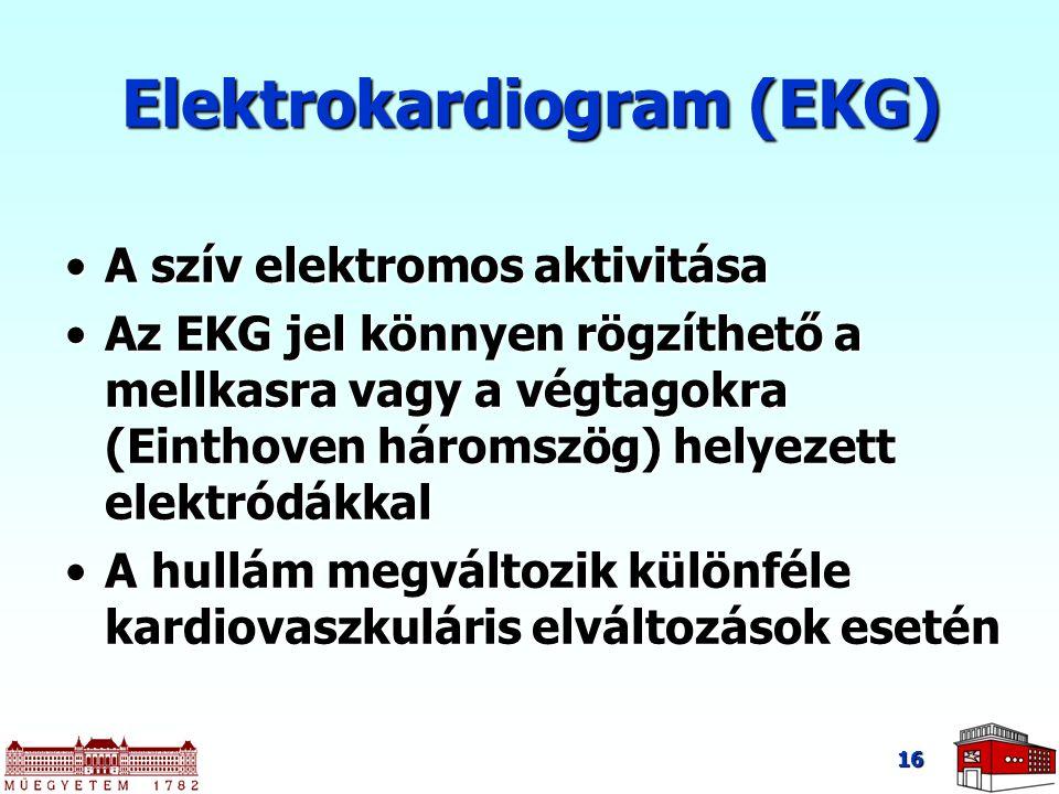 16 A szív elektromos aktivitásaA szív elektromos aktivitása Az EKG jel könnyen rögzíthető a mellkasra vagy a végtagokra (Einthoven háromszög) helyezett elektródákkalAz EKG jel könnyen rögzíthető a mellkasra vagy a végtagokra (Einthoven háromszög) helyezett elektródákkal A hullám megváltozik különféle kardiovaszkuláris elváltozások eseténA hullám megváltozik különféle kardiovaszkuláris elváltozások esetén Elektrokardiogram (EKG)
