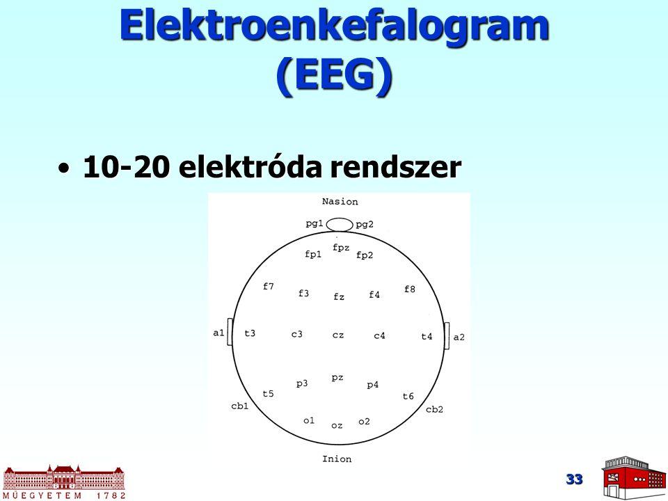 33 10-20 elektróda rendszer10-20 elektróda rendszer Elektroenkefalogram (EEG)