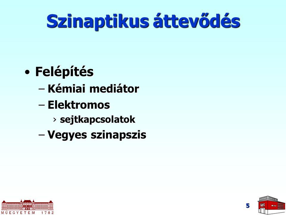 VILLAMOS JELEK Villamos jelek és információátvitel az élő szervezetben 26