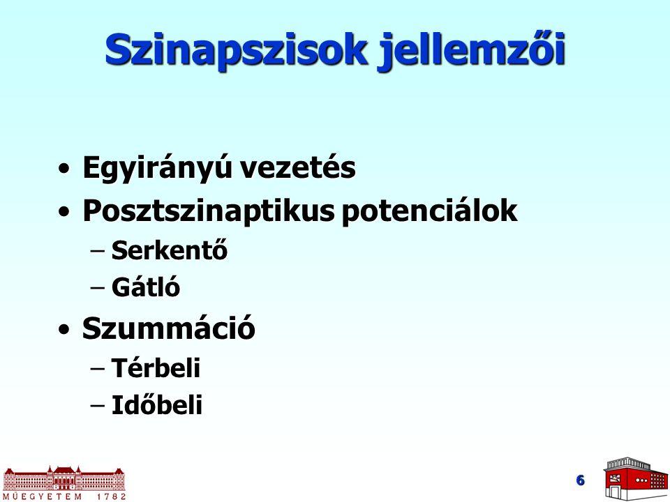 Szinapszisok jellemzői Egyirányú vezetésEgyirányú vezetés Posztszinaptikus potenciálokPosztszinaptikus potenciálok –Serkentő –Gátló SzummációSzummáció –Térbeli –Időbeli 6