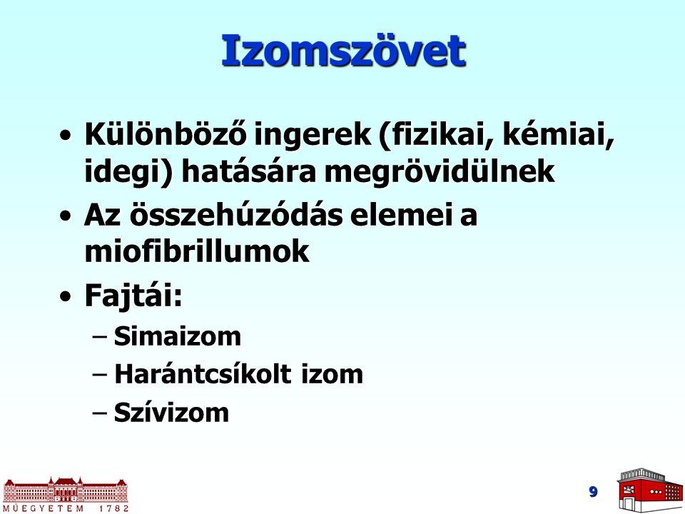 9 Izomszövet Különböző ingerek (fizikai, kémiai, idegi) hatására megrövidülnekKülönböző ingerek (fizikai, kémiai, idegi) hatására megrövidülnek Az összehúzódás elemei a miofibrillumokAz összehúzódás elemei a miofibrillumok Fajtái:Fajtái: –Simaizom –Harántcsíkolt izom –Szívizom