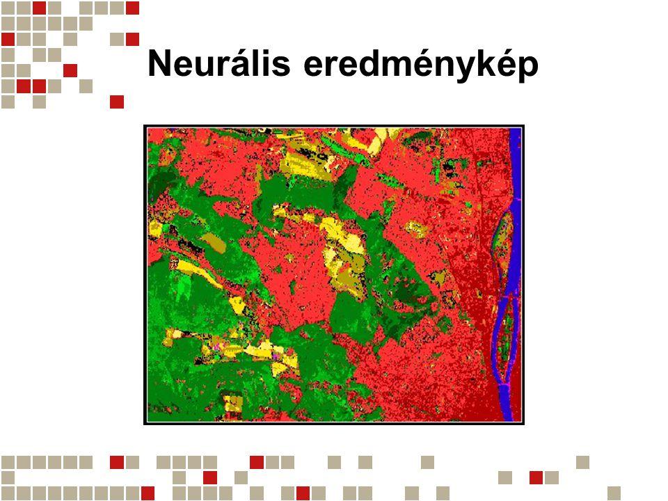Neuro-fuzzy eredménykép