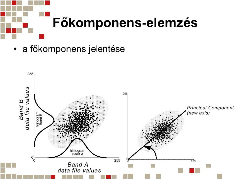Főkomponens-elemzés a főkomponens jelentése