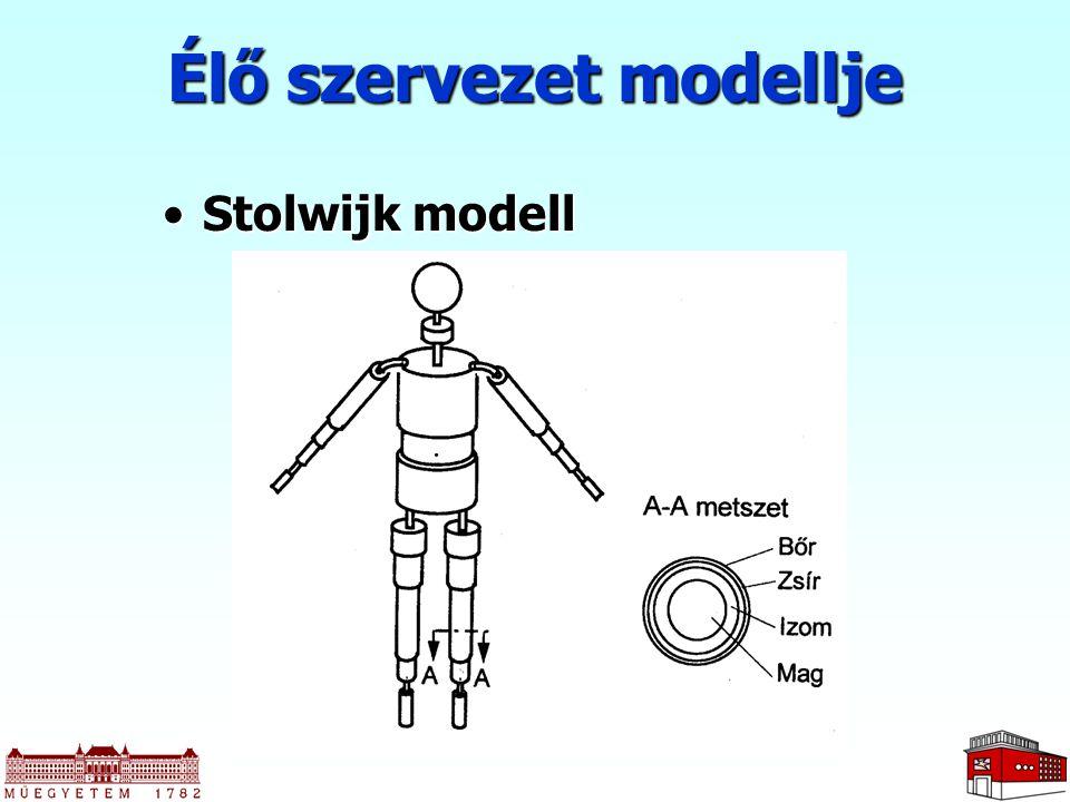 Élő szervezet modellje Stolwijk modellStolwijk modell