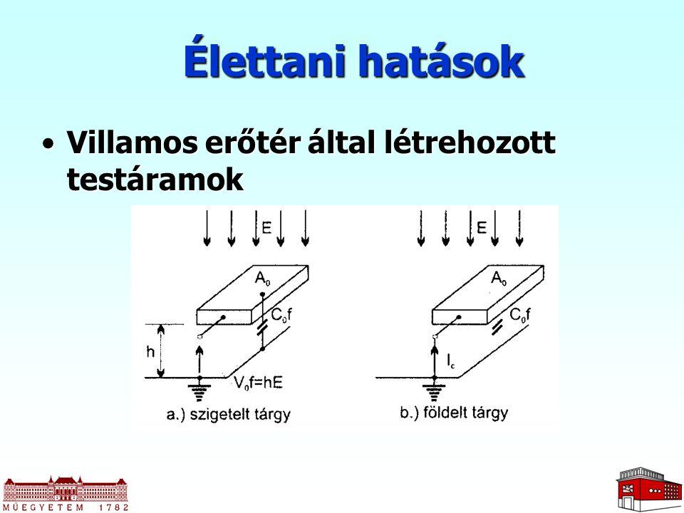 Irodalom Horváth T.– Csernátony Hoffer A.