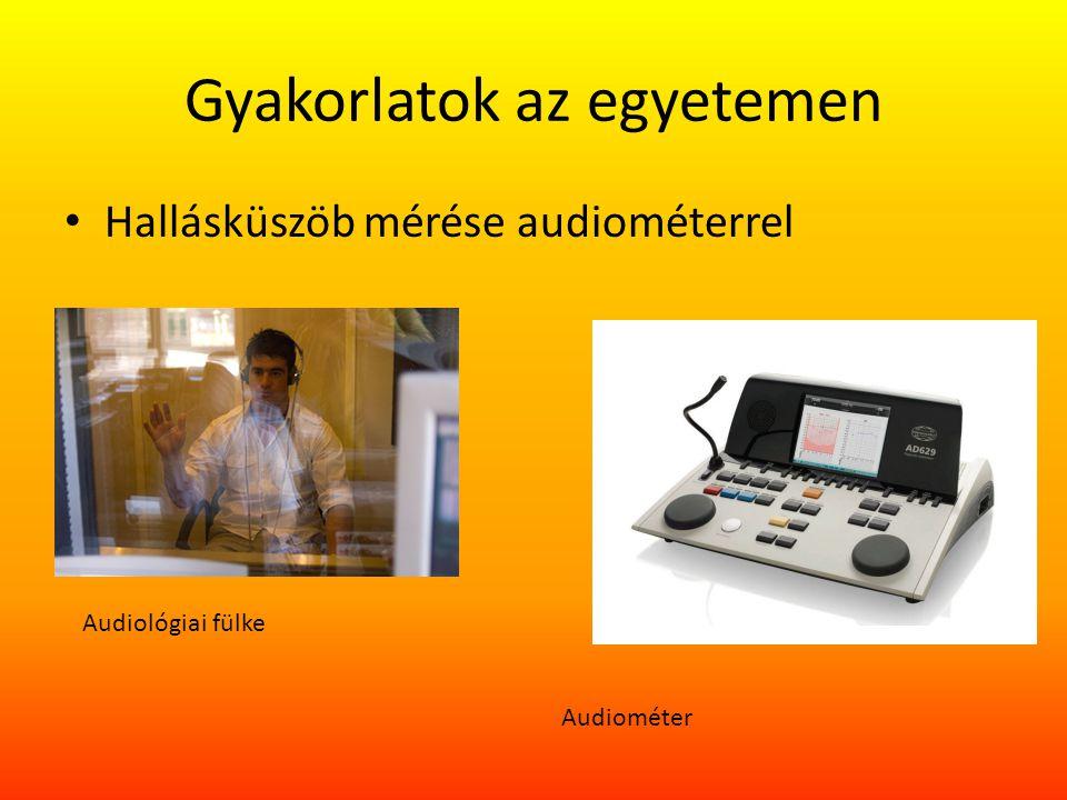 Gyakorlatok az egyetemen Hallásküszöb mérése audiométerrel Audiológiai fülke Audiométer