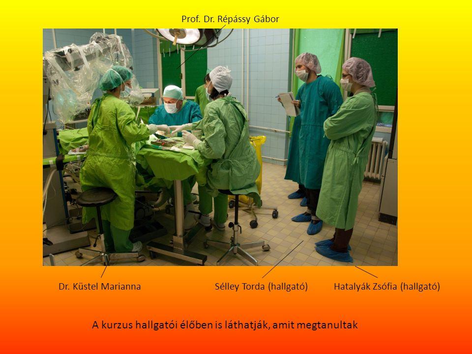A kurzus hallgatói élőben is láthatják, amit megtanultak Prof. Dr. Répássy Gábor Dr. Küstel MariannaSélley Torda (hallgató)Hatalyák Zsófia (hallgató)