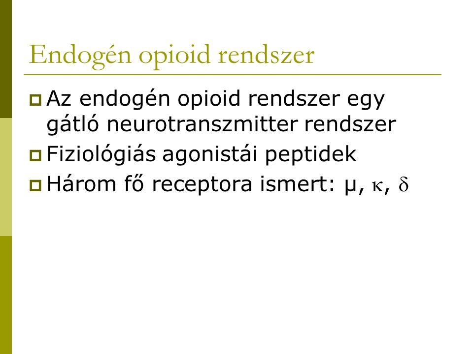  Az ópiátok az endogén opioid rendszerben hatnak  Az endogén opioid peptidek funkcióit nem ismerjük pontosan  Az erős fájdalomcsillapító ópiátok főleg  receptoron hatnak  A  receptorok főként a fájdalomérző pályák átkapcsolódási pontjainál találhatók