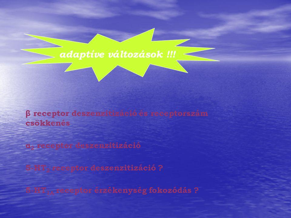 adaptíve változások !!! β receptor deszenzitizáció és receptorszám csökkenés α 2 receptor deszenzitizáció 5-HT 2 receptor deszenzitizáció ? 5-HT 1A re