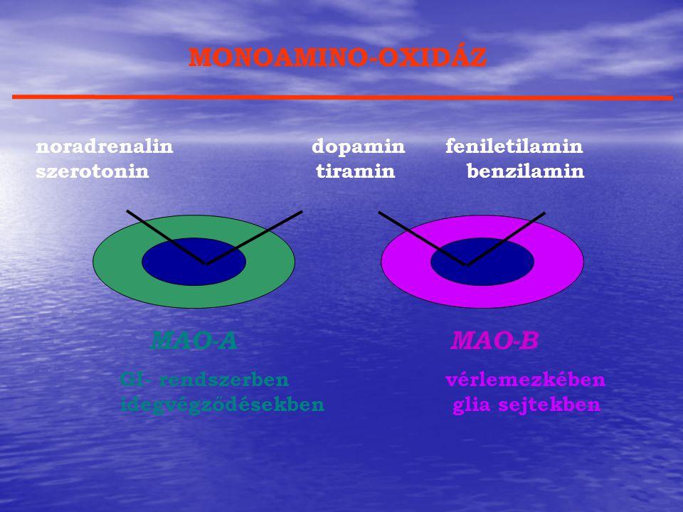 noradrenalin dopaminfeniletilamin szerotonin tiramin benzilamin MONOAMINO-OXIDÁZ MAO-A GI- rendszerben idegvégződésekben MAO-B vérlemezkében glia sejt