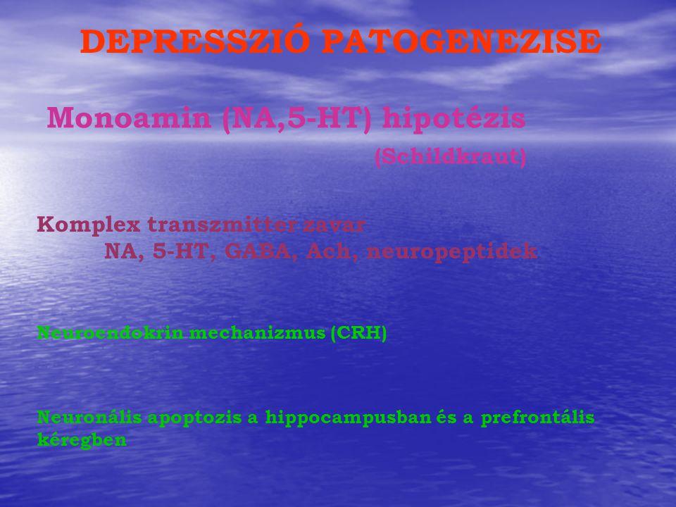 Monoamin (NA,5-HT) hipotézis (Schildkraut) Neuronális apoptozis a hippocampusban és a prefrontális kéregben Neuroendokrin mechanizmus (CRH) DEPRESSZIÓ