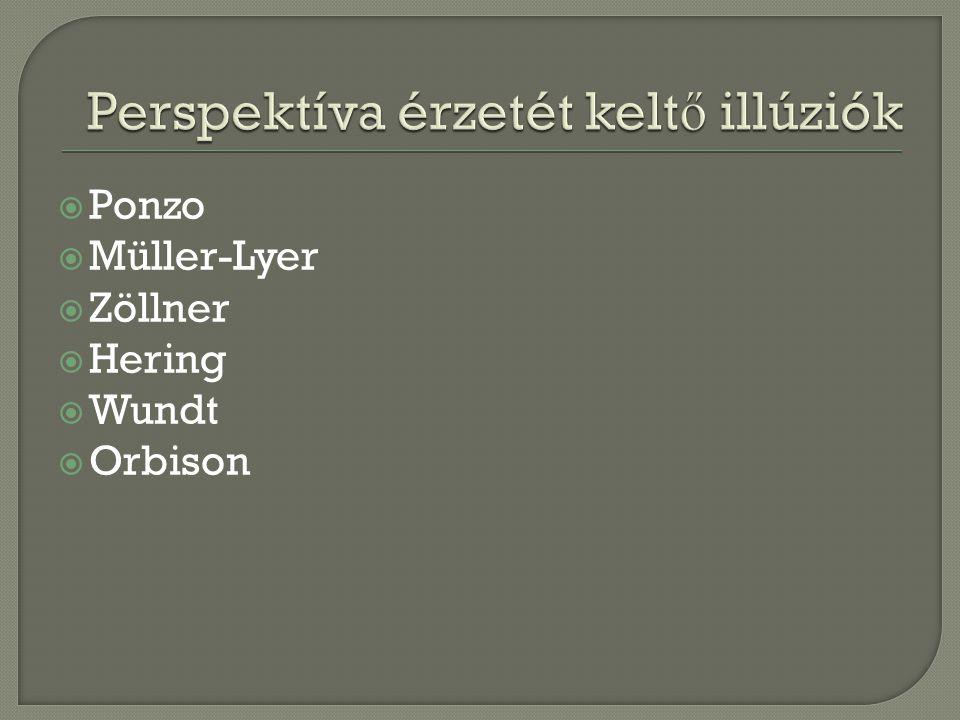  Ponzo  Müller-Lyer  Zöllner  Hering  Wundt  Orbison