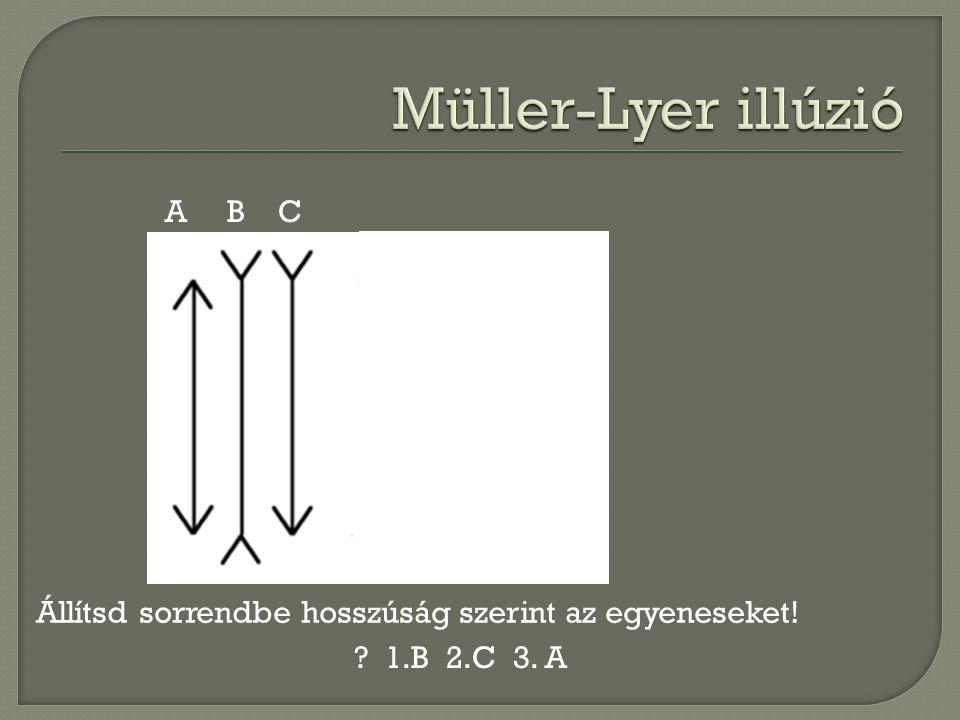 A B C Állítsd sorrendbe hosszúság szerint az egyeneseket! ? 1.B 2.C 3. A