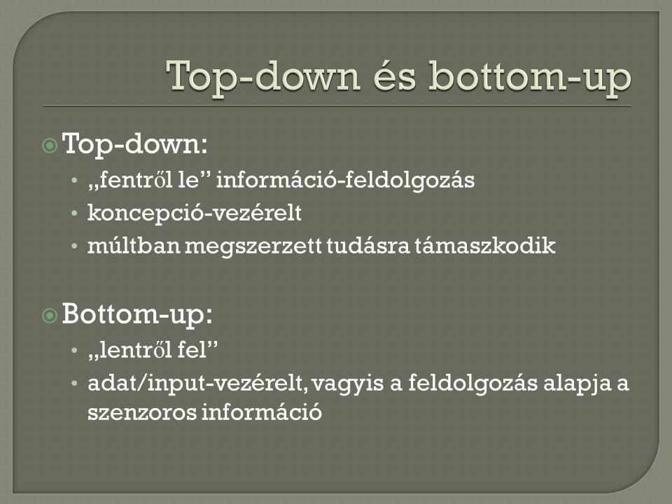 """ Top-down: """"fentr ő l le"""" információ-feldolgozás koncepció-vezérelt múltban megszerzett tudásra támaszkodik  Bottom-up: """"lentr ő l fel"""" adat/input-v"""