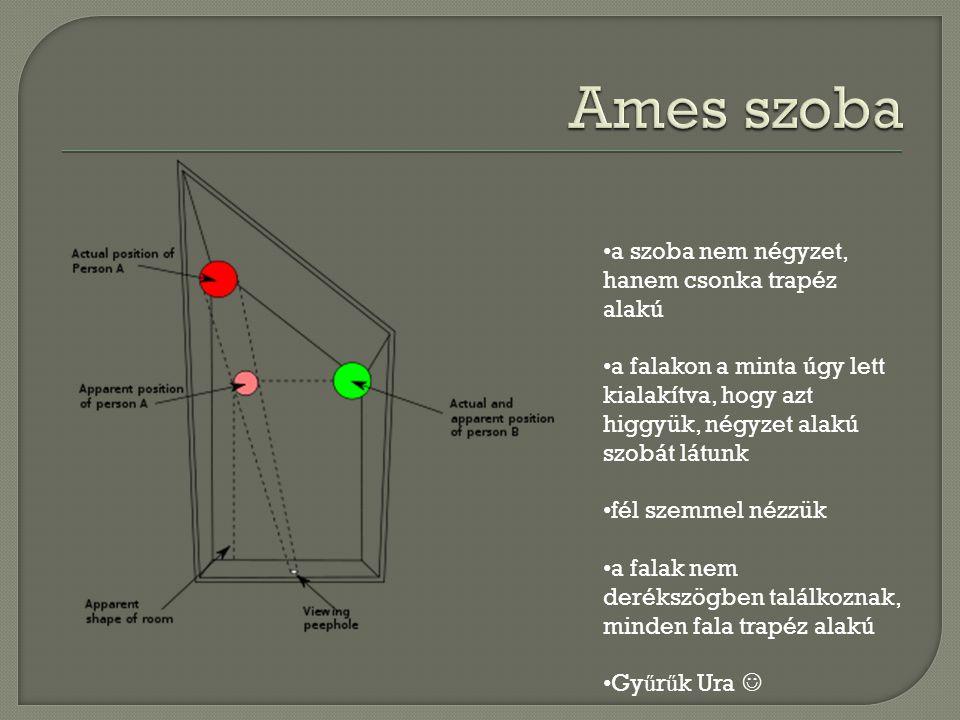 a szoba nem négyzet, hanem csonka trapéz alakú a falakon a minta úgy lett kialakítva, hogy azt higgyük, négyzet alakú szobát látunk fél szemmel nézzük