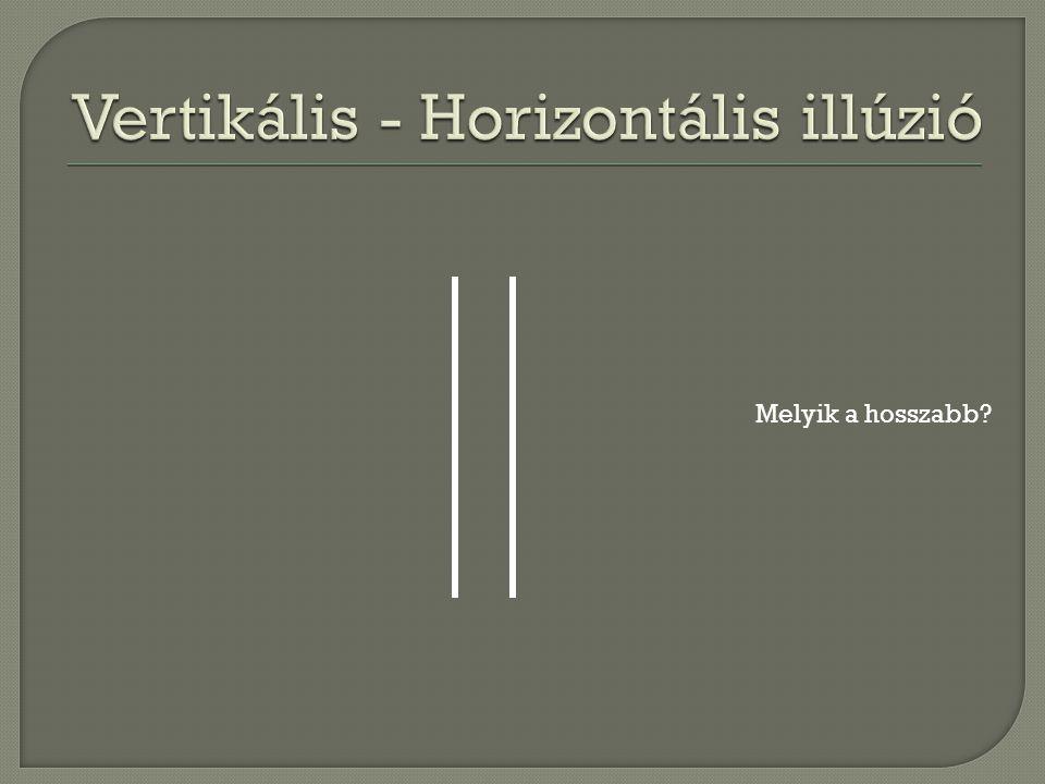  Két azonos hosszúságú vonal közül a vertikális t ű nik hosszabbnak.