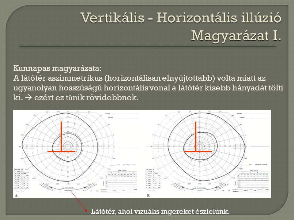 Kunnapas magyarázata: A látótér aszimmetrikus (horizontálisan elnyújtottabb) volta miatt az ugyanolyan hosszúságú horizontális vonal a látótér kisebb
