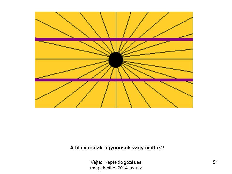54 Are the purple lines straight or bent? A lila vonalak egyenesek vagy íveltek? Vajta: Képfeldolgozás és megjelenítés 2014 tavasz