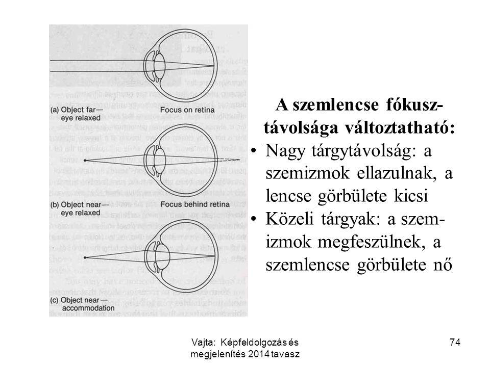 74 A szemlencse fókusz- távolsága változtatható: Nagy tárgytávolság: a szemizmok ellazulnak, a lencse görbülete kicsi Közeli tárgyak: a szem- izmok me