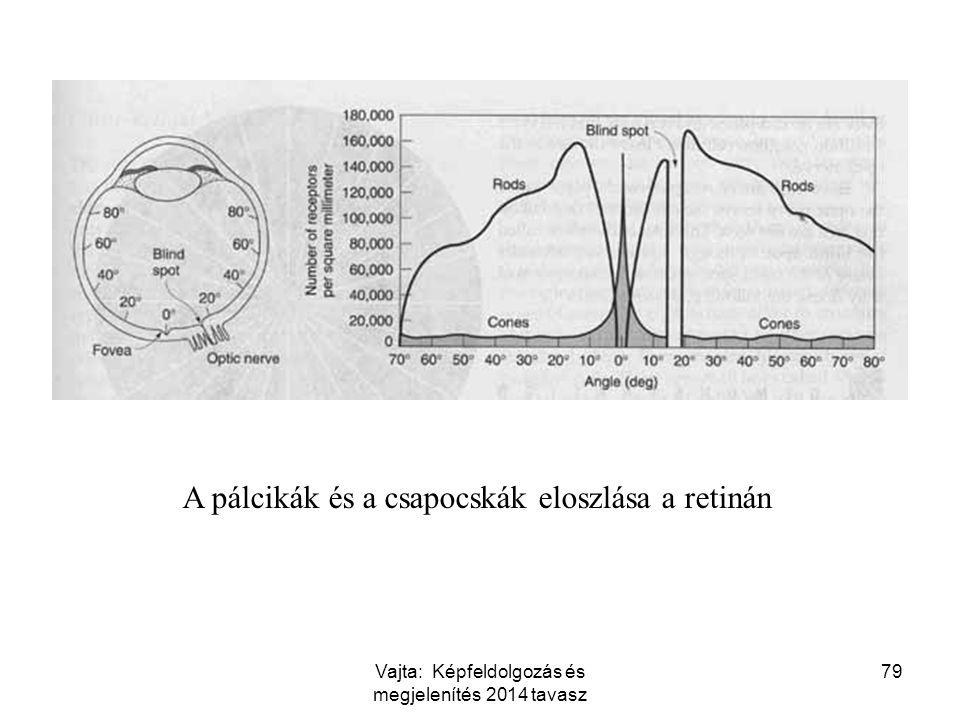 79 A pálcikák és a csapocskák eloszlása a retinán Vajta: Képfeldolgozás és megjelenítés 2014 tavasz