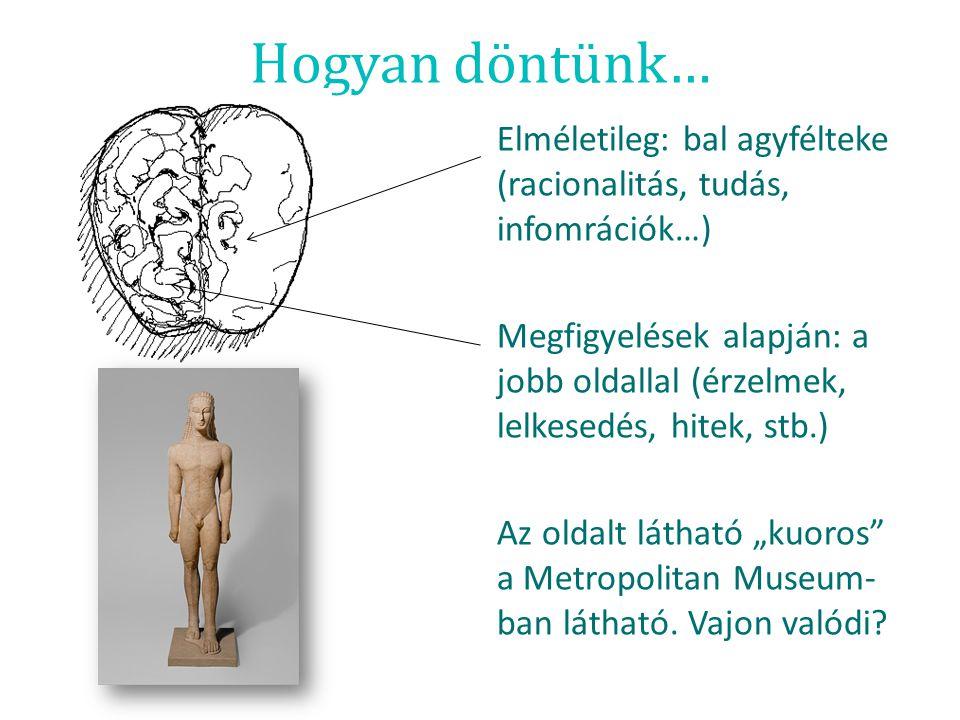 Hogyan döntünk… Elméletileg: bal agyfélteke (racionalitás, tudás, infomrációk…) Megfigyelések alapján: a jobb oldallal (érzelmek, lelkesedés, hitek, s