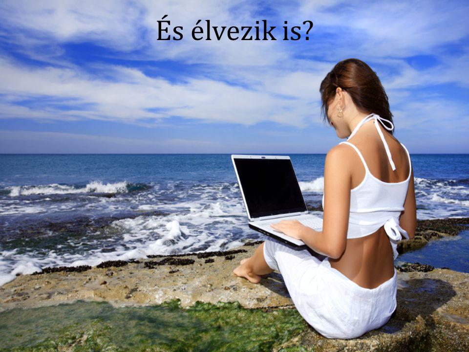 Információ tárolás és kezelés naplók, weboldalak, stb.