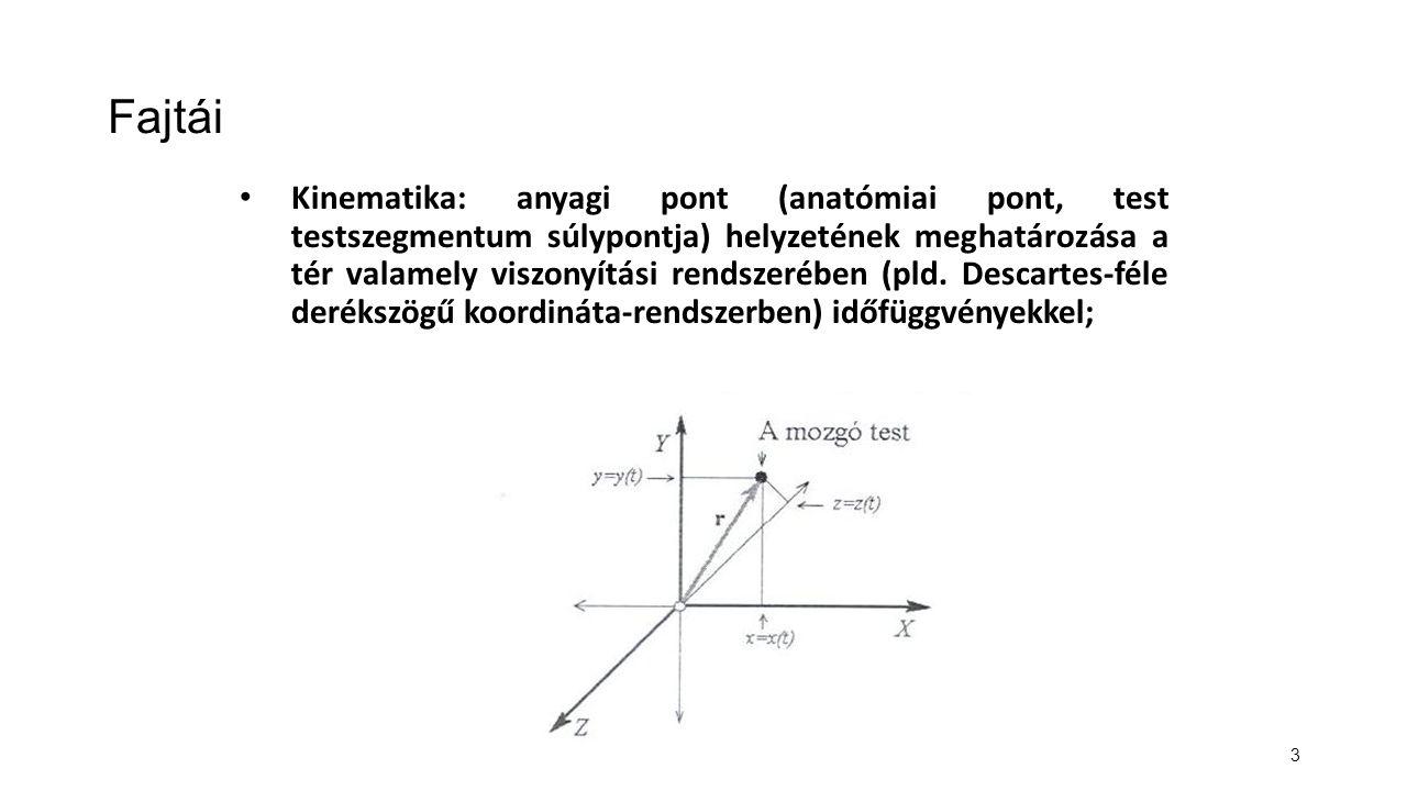 3 Fajtái Kinematika: anyagi pont (anatómiai pont, test testszegmentum súlypontja) helyzetének meghatározása a tér valamely viszonyítási rendszerében (