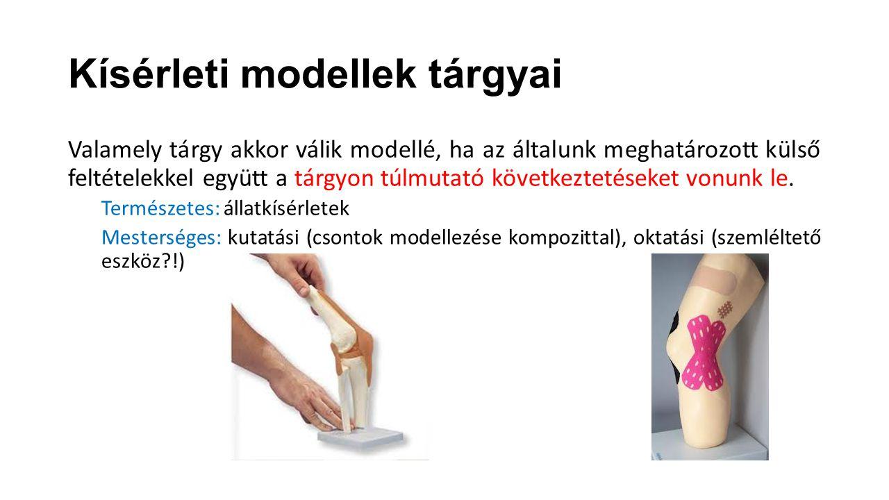 Kísérleti modellek tárgyai Valamely tárgy akkor válik modellé, ha az általunk meghatározott külső feltételekkel együtt a tárgyon túlmutató következtet