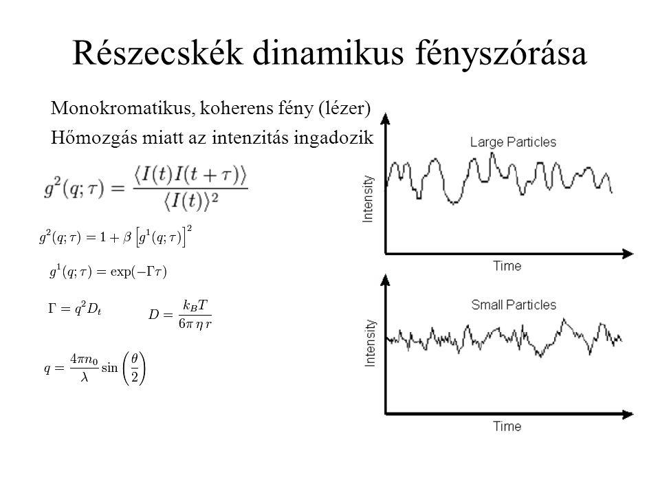 Részecskék dinamikus fényszórása Monokromatikus, koherens fény (lézer) Hőmozgás miatt az intenzitás ingadozik