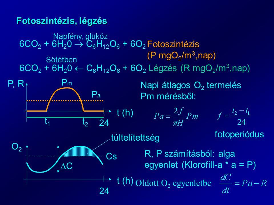 Fotoszintézis, légzés 6CO 2 + 6H 2 0  C 6 H 12 O 6 + 6O 2 Napfény, glükóz Fotoszintézis (P mgO 2 /m 3,nap) 6CO 2 + 6H 2 0  C 6 H 12 O 6 + 6O 2 Légzé